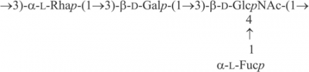 Повторяющееся тетрасахаридное звено О-связанного гликана флагеллина A. brasilense Sp7