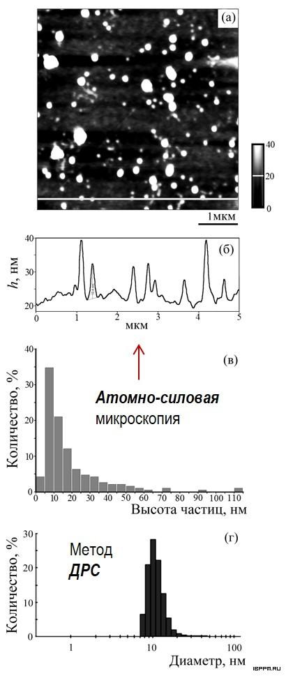 Параметры частиц препарата ЛПС штамма A. lipoferum Sp59b