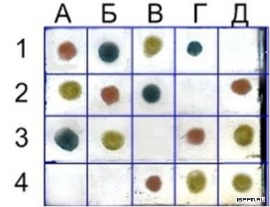 Мультиплексный дот-анализ с наноклетками кроличьих антител на IgG цыпленка (А2, Б3, В1, Г4, Д3, Д4), IgG крысы (А1, Б2, В4, Г3, Д2), аффинно очищенной фракции антител на IgG мыши (А3, Б1, В2, Г1) и БСА (А4, Б4, В3, Г2, Д1)