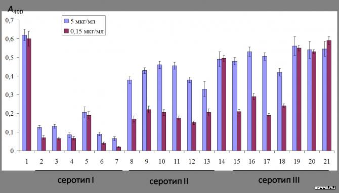 Результаты иммуноферментного анализа (ИФА) препаратов ЛПС A. thiophilum BV-S (1) и азоспирилл трёх серогрупп (2-21) с антителами против ЛПС данного штамма